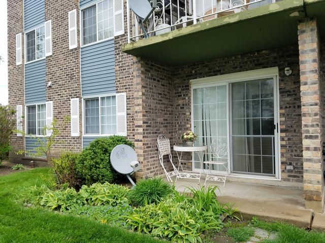 1521 N Windsor Drive #115, Arlington Heights, IL 60004 (MLS #10385505) :: Berkshire Hathaway HomeServices Snyder Real Estate