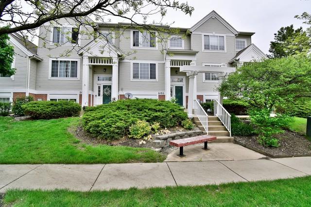 1053 Savoy Court 22-3, Elk Grove Village, IL 60007 (MLS #10385639) :: Berkshire Hathaway HomeServices Snyder Real Estate