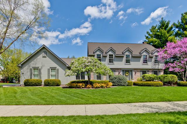 52 White Barn Road, Vernon Hills, IL 60061 (MLS #10385666) :: Helen Oliveri Real Estate