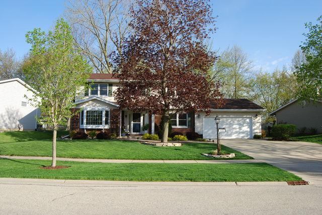 4100 Dixon Drive, Hoffman Estates, IL 60192 (MLS #10386022) :: Helen Oliveri Real Estate