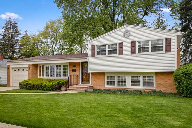 2324 N Lafayette Street, Arlington Heights, IL 60004 (MLS #10386078) :: Helen Oliveri Real Estate