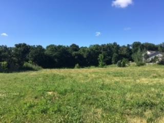 908 Churchill Drive, Plano, IL 60545 (MLS #10386141) :: Ryan Dallas Real Estate