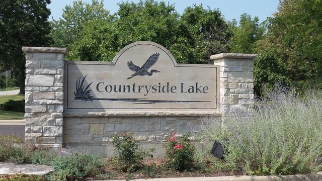 20977 W Lakeview Parkway, Mundelein, IL 60060 (MLS #10386161) :: Berkshire Hathaway HomeServices Snyder Real Estate