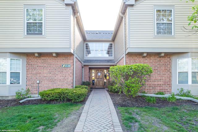 1750 Sleepy Hollow Court #10, Schaumburg, IL 60195 (MLS #10386435) :: Berkshire Hathaway HomeServices Snyder Real Estate
