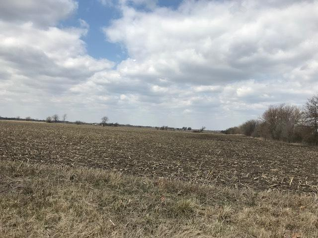 Parcel 8 Church Road, Beecher, IL 60401 (MLS #10386672) :: Property Consultants Realty