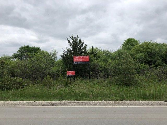 13815 Mccarthy Road, Lemont, IL 60439 (MLS #10386974) :: Baz Realty Network | Keller Williams Elite