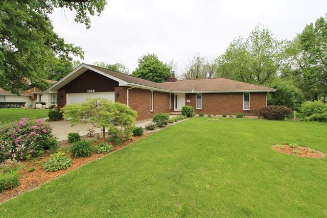 1046 Lisbon Street, Morris, IL 60450 (MLS #10387006) :: Ryan Dallas Real Estate