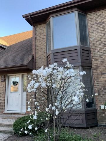 44 Kings Court #0, Westchester, IL 60154 (MLS #10387061) :: Berkshire Hathaway HomeServices Snyder Real Estate