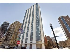 1555 N Dearborn Street N 17AB, Chicago, IL 60610 (MLS #10387635) :: Property Consultants Realty