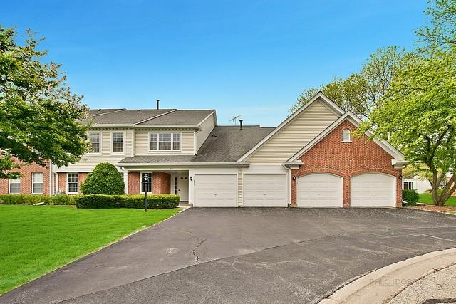 807 Persimmon Lane C, Mount Prospect, IL 60056 (MLS #10387713) :: Berkshire Hathaway HomeServices Snyder Real Estate