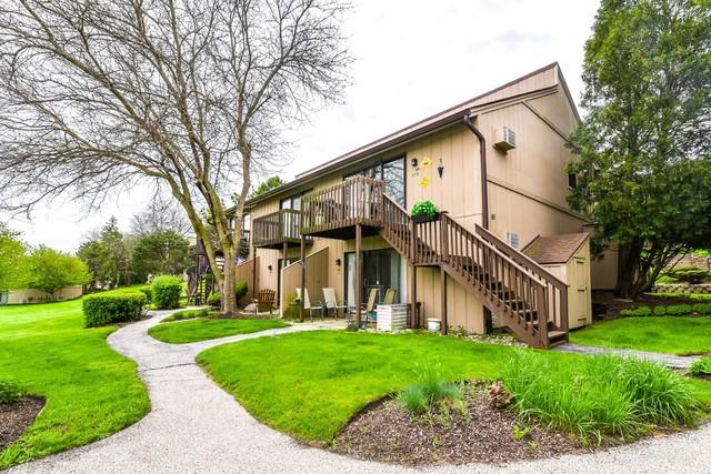 45 Nassau Colony Street #7, Fox Lake, IL 60020 (MLS #10387719) :: The Jacobs Group