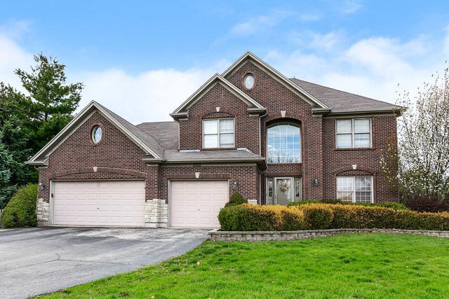 13531 Eagle Nest Court, Plainfield, IL 60544 (MLS #10387848) :: Ryan Dallas Real Estate