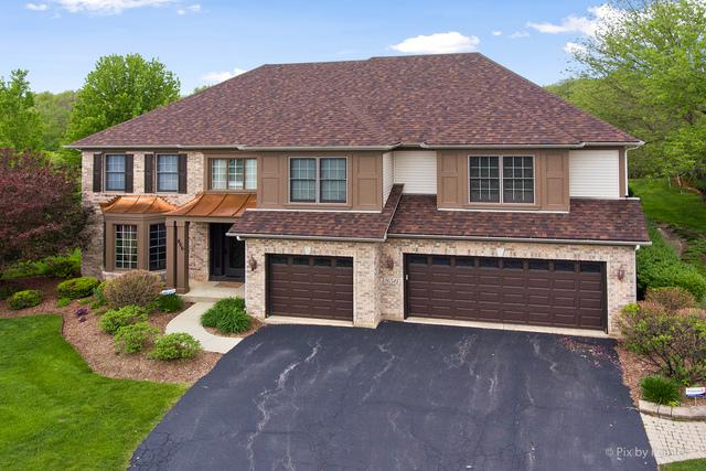856 Tipperary Street, Gilberts, IL 60136 (MLS #10387985) :: Berkshire Hathaway HomeServices Snyder Real Estate
