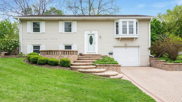 4 Ashlawn Avenue, Montgomery, IL 60538 (MLS #10388074) :: Ryan Dallas Real Estate