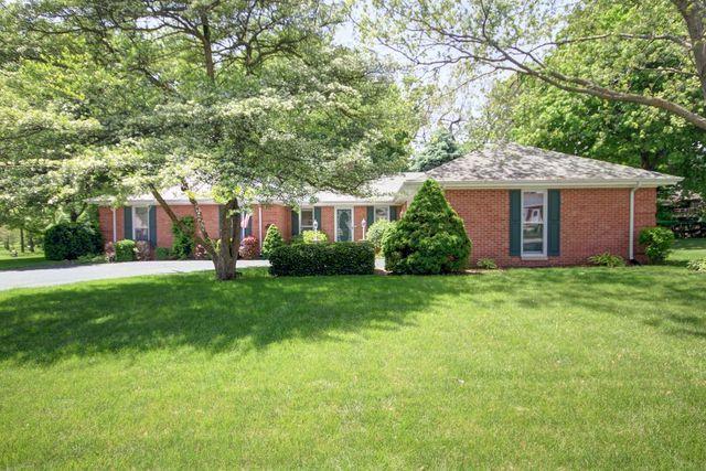 101 N Turner Drive, Mahomet, IL 61853 (MLS #10388420) :: Ani Real Estate