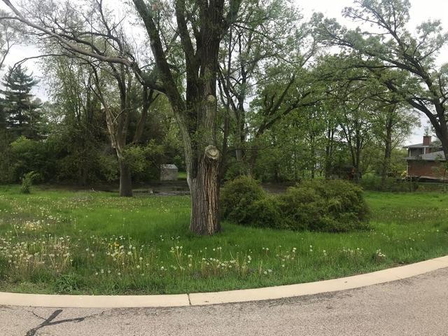 1282 N Grove Avenue, Palatine, IL 60067 (MLS #10388546) :: Berkshire Hathaway HomeServices Snyder Real Estate