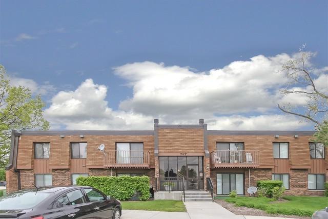 737 Limerick Lane 2A, Schaumburg, IL 60193 (MLS #10388626) :: Berkshire Hathaway HomeServices Snyder Real Estate