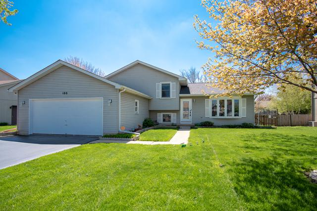 180 Meadow Vw, Antioch, IL 60002 (MLS #10388637) :: Berkshire Hathaway HomeServices Snyder Real Estate