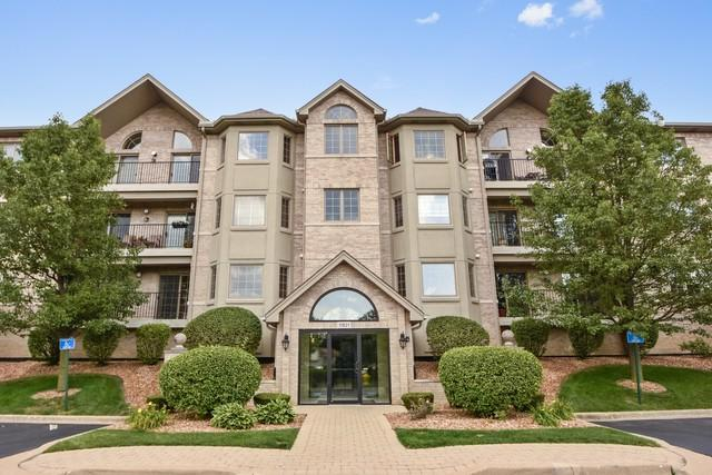 11921 Windemere Court #204, Orland Park, IL 60467 (MLS #10388649) :: The Mattz Mega Group