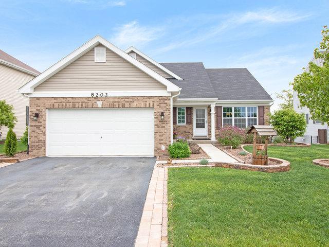 8202 Seward Road, Joliet, IL 60431 (MLS #10388750) :: Berkshire Hathaway HomeServices Snyder Real Estate