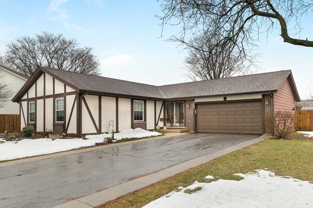 423 E Balsam Lane, Palatine, IL 60074 (MLS #10388908) :: Berkshire Hathaway HomeServices Snyder Real Estate