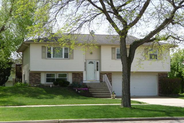 1215 Freeman Road, Hoffman Estates, IL 60192 (MLS #10389030) :: Berkshire Hathaway HomeServices Snyder Real Estate