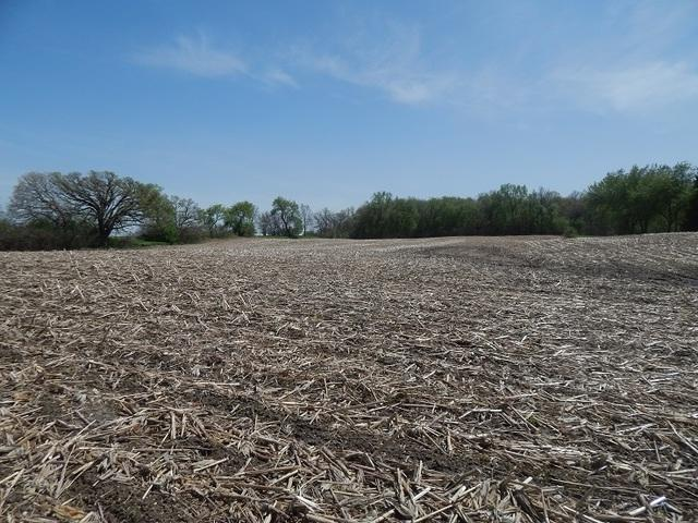 Lot 13 Lenschow Road, Sycamore, IL 60178 (MLS #10389100) :: Berkshire Hathaway HomeServices Snyder Real Estate