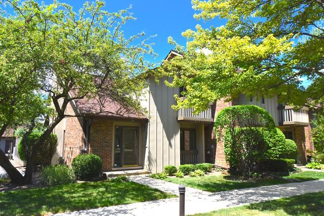 25 Kyle Court, Willowbrook, IL 60527 (MLS #10389203) :: Berkshire Hathaway HomeServices Snyder Real Estate