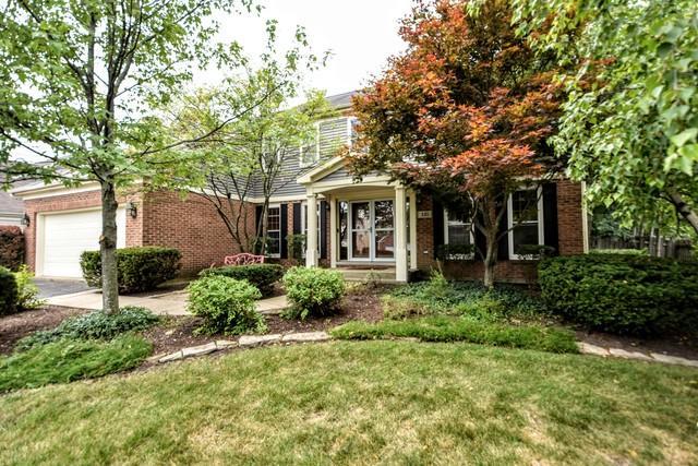 321 Ambria Drive, Mundelein, IL 60060 (MLS #10389323) :: Berkshire Hathaway HomeServices Snyder Real Estate