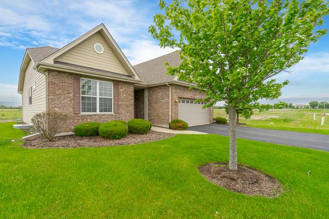 13656 S Palmetto Drive, Plainfield, IL 60544 (MLS #10389457) :: Berkshire Hathaway HomeServices Snyder Real Estate