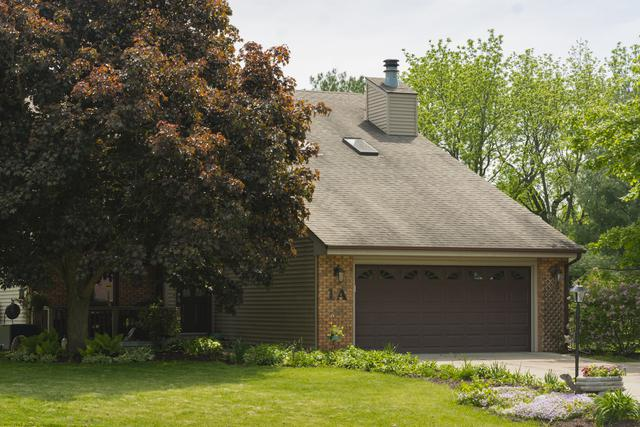 1A James Court, SIDNEY, IL 61877 (MLS #10389481) :: Littlefield Group