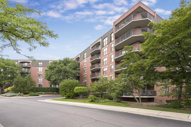 509 Aurora Avenue #618, Naperville, IL 60540 (MLS #10389540) :: The Mattz Mega Group