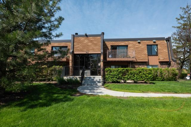711 S Waterford Road Unit2d, Schaumburg, IL 60193 (MLS #10389638) :: Berkshire Hathaway HomeServices Snyder Real Estate