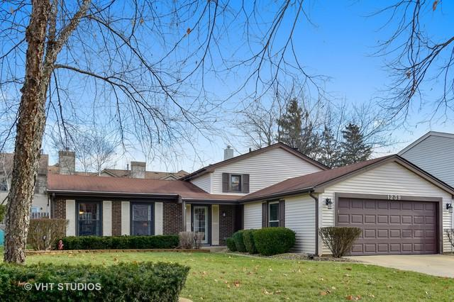 1239 Mill Creek Drive, Buffalo Grove, IL 60089 (MLS #10389737) :: Berkshire Hathaway HomeServices Snyder Real Estate