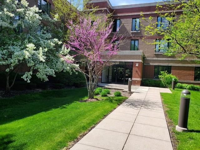 891 Central Avenue #217, Highland Park, IL 60035 (MLS #10389818) :: The Wexler Group at Keller Williams Preferred Realty