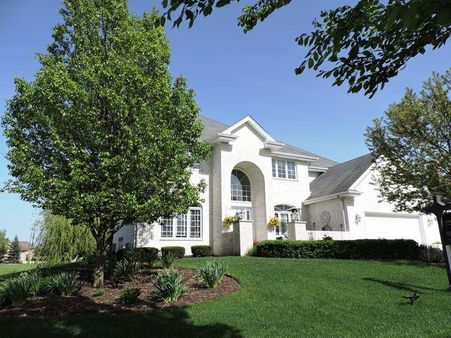 22973 Lakeview Estates Boulevard, Frankfort, IL 60423 (MLS #10389927) :: Domain Realty