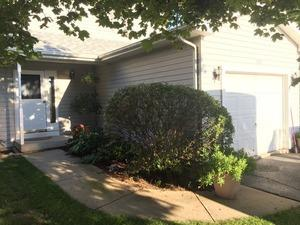 595 Drom Court, Antioch, IL 60002 (MLS #10389950) :: Berkshire Hathaway HomeServices Snyder Real Estate