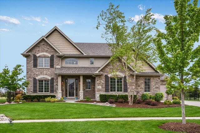 1865 Brogan Drive, New Lenox, IL 60451 (MLS #10390096) :: Berkshire Hathaway HomeServices Snyder Real Estate