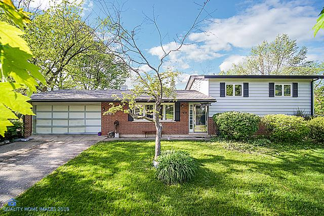 226 Indiana Street, Park Forest, IL 60466 (MLS #10390098) :: John Lyons Real Estate
