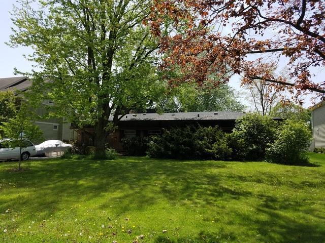 528 Turf Lane, Wheaton, IL 60187 (MLS #10390212) :: Baz Realty Network   Keller Williams Elite