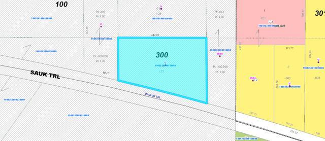 00 W Sauk Trail, Frankfort, IL 60423 (MLS #10390225) :: Berkshire Hathaway HomeServices Snyder Real Estate