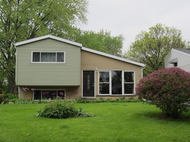 66 S Main Street, Glen Ellyn, IL 60137 (MLS #10390256) :: Berkshire Hathaway HomeServices Snyder Real Estate