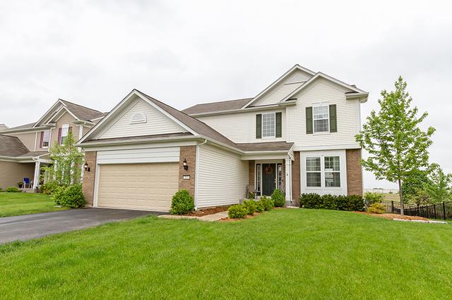 113 Chapin Way, Oswego, IL 60543 (MLS #10390375) :: Berkshire Hathaway HomeServices Snyder Real Estate