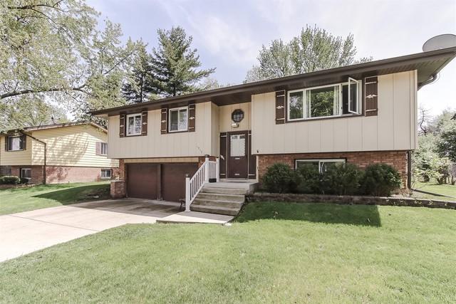1317 W Weathersfield Way, Schaumburg, IL 60193 (MLS #10390397) :: Berkshire Hathaway HomeServices Snyder Real Estate