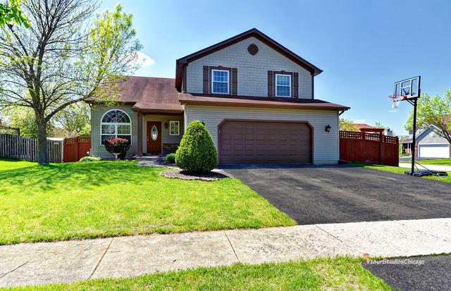 642 Coneflower Drive, Romeoville, IL 60446 (MLS #10390586) :: Berkshire Hathaway HomeServices Snyder Real Estate