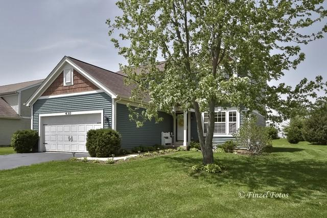 430 Geneva Lane, Cary, IL 60013 (MLS #10390859) :: Berkshire Hathaway HomeServices Snyder Real Estate