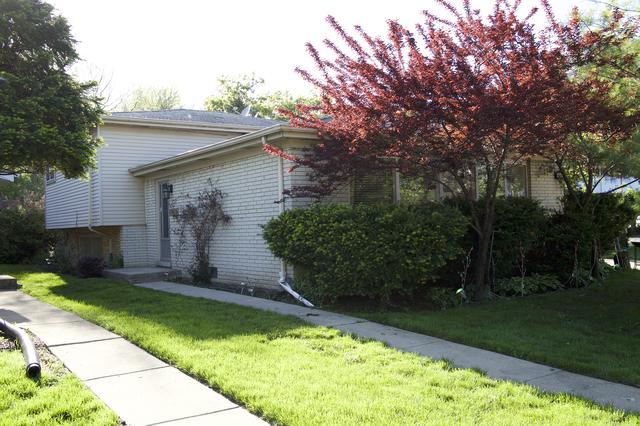 9544 Leamington Street, Skokie, IL 60077 (MLS #10391060) :: Ani Real Estate