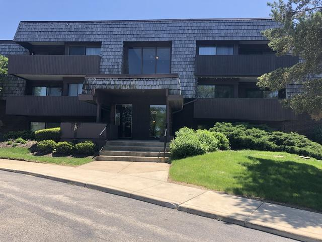 525 Timber Ridge Drive #307, Carol Stream, IL 60188 (MLS #10391108) :: Berkshire Hathaway HomeServices Snyder Real Estate