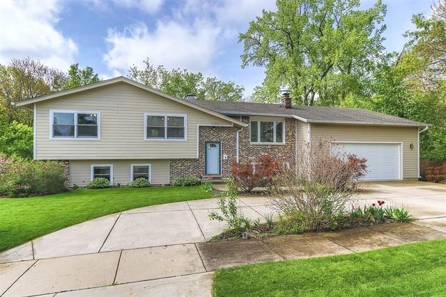 113 Claria Drive, Roselle, IL 60172 (MLS #10391278) :: Berkshire Hathaway HomeServices Snyder Real Estate