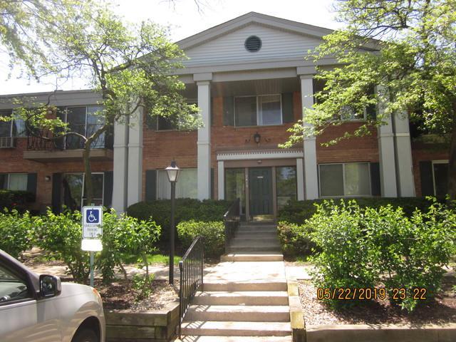 2415 S Goebbert Road H203, Arlington Heights, IL 60004 (MLS #10391305) :: Berkshire Hathaway HomeServices Snyder Real Estate